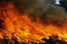 ...пгт Кирилловка на косе Пересыпь (Акимовский район Запорожской области) возник пожар.