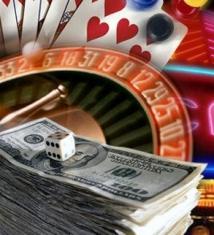 Организаторы сети подпольных казино в Подмосковье активно сотрудничают со следствием